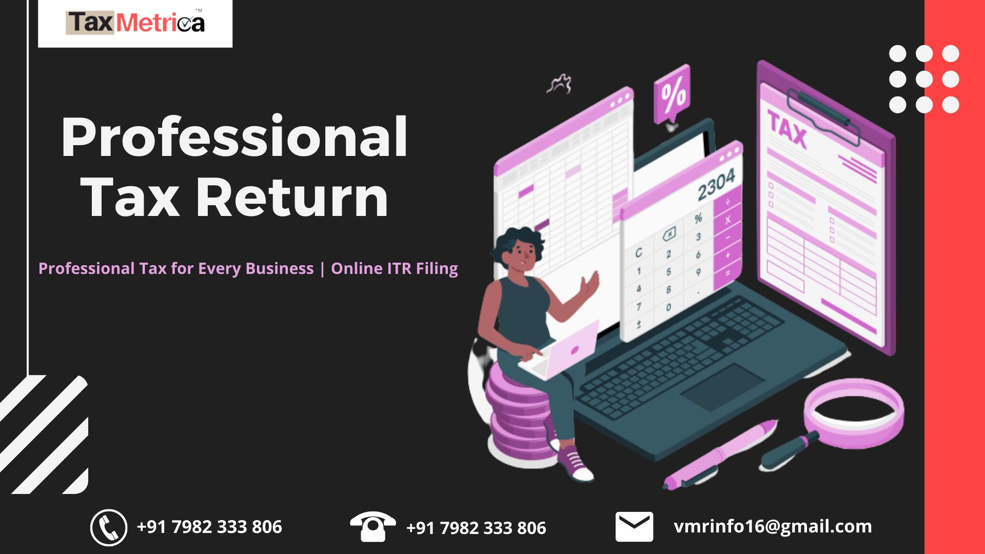 Professional Tax Return